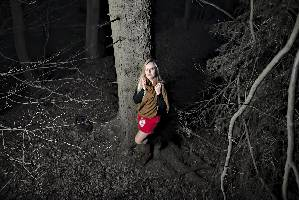 Wald-rot